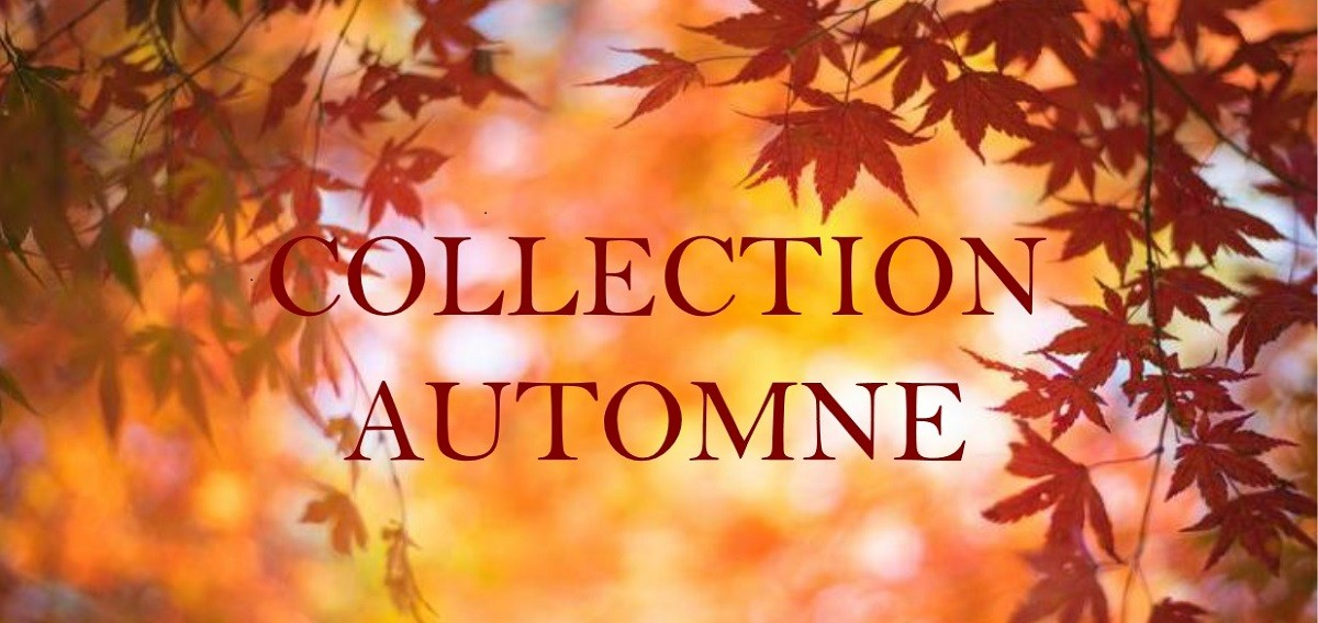 collection automne 20/21